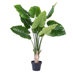 FILO Philodendron groen H 90 cm