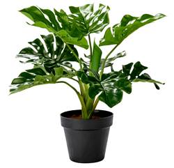 TROPICAL Plant in pot groen H 37 cm; Ø 12,5 cm