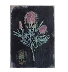 ASTERALES Decoración de pared negro, rosa A 42,5 x An. 29 x P 2,5 cm