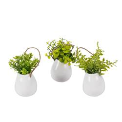 GREENS Plant in hangpot wit, groen H 16 cm